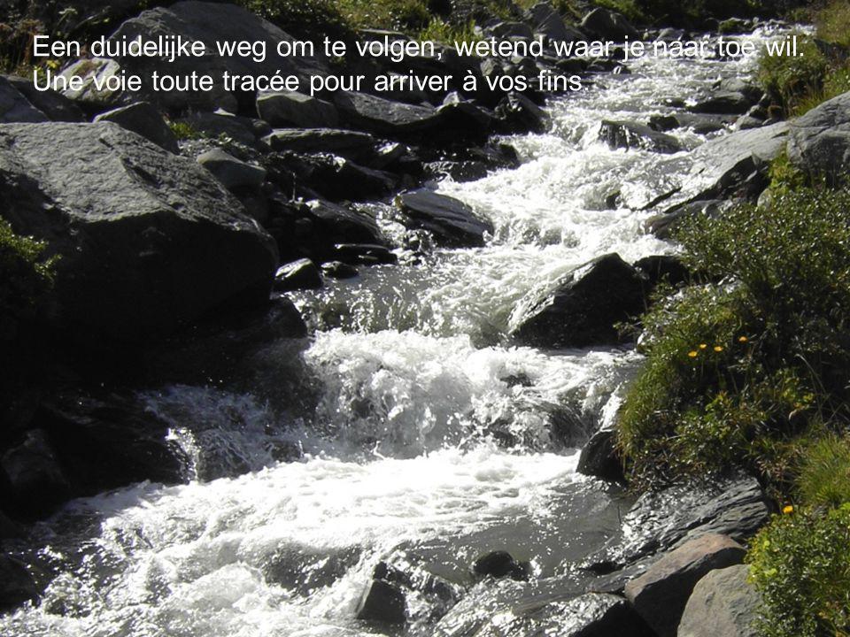 Een duidelijke weg om te volgen, wetend waar je naar toe wil. Une voie toute tracée pour arriver à vos fins.