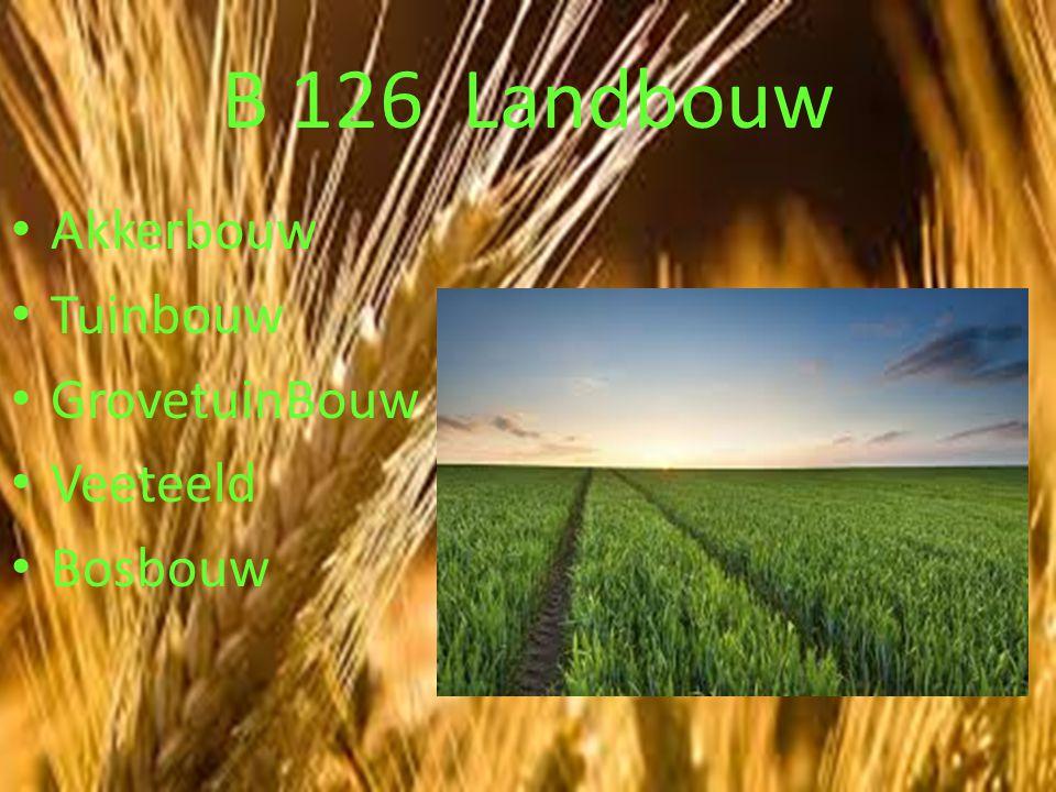 B 126 Landbouw Akkerbouw Tuinbouw GrovetuinBouw Veeteeld Bosbouw