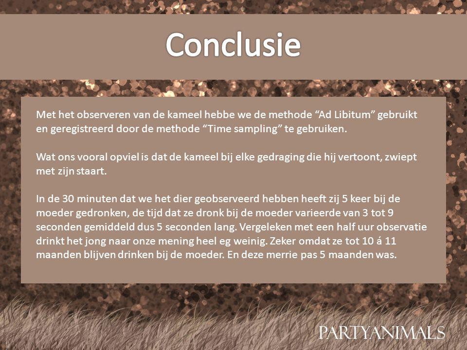 """Met het observeren van de kameel hebbe we de methode """"Ad Libitum"""" gebruikt en geregistreerd door de methode """"Time sampling"""" te gebruiken. Wat ons voor"""