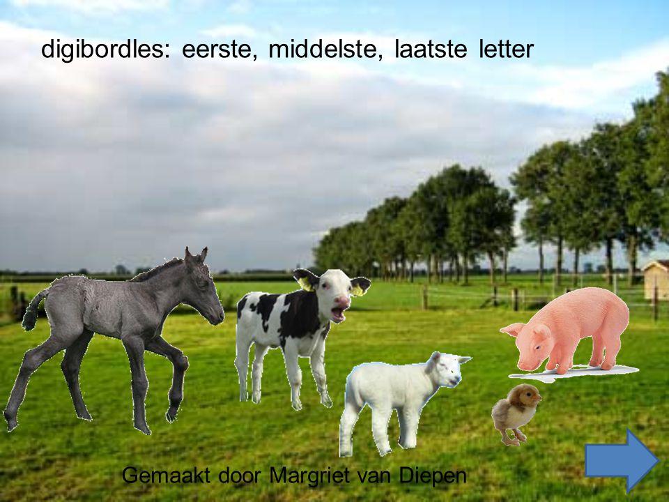 Gemaakt door Margriet van Diepen digibordles: eerste, middelste, laatste letter