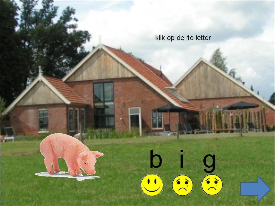 zoek de eerste letter big bi g big i g zoek de middelste letter zoek de laatste letter
