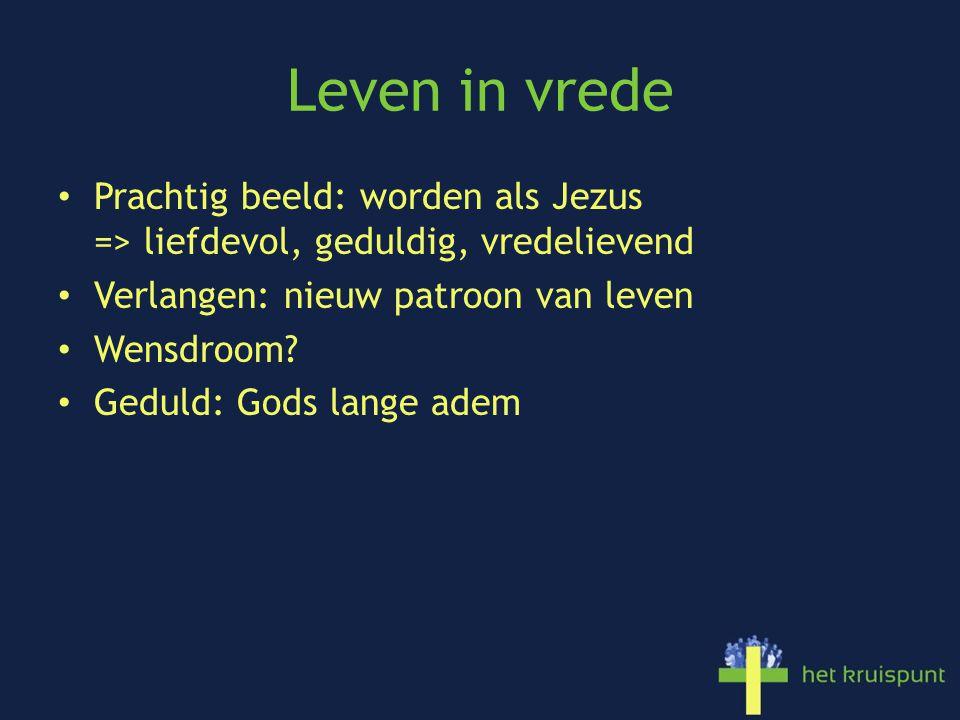 Leven in vrede Prachtig beeld: worden als Jezus => liefdevol, geduldig, vredelievend Verlangen: nieuw patroon van leven Wensdroom.