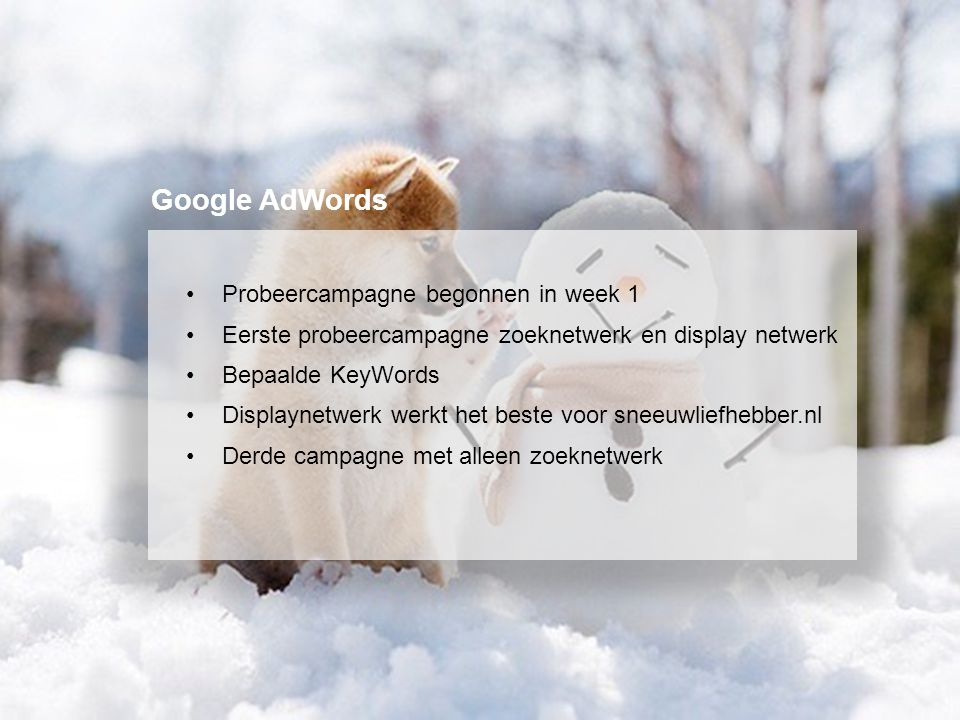 Probeercampagne begonnen in week 1 Eerste probeercampagne zoeknetwerk en display netwerk Bepaalde KeyWords Displaynetwerk werkt het beste voor sneeuwl