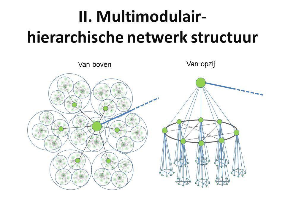 II. Multimodulair- hierarchische netwerk structuur Van boven Van opzij