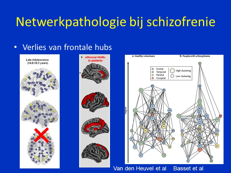 Netwerkpathologie bij schizofrenie Verlies van frontale hubs Basset et alVan den Heuvel et al