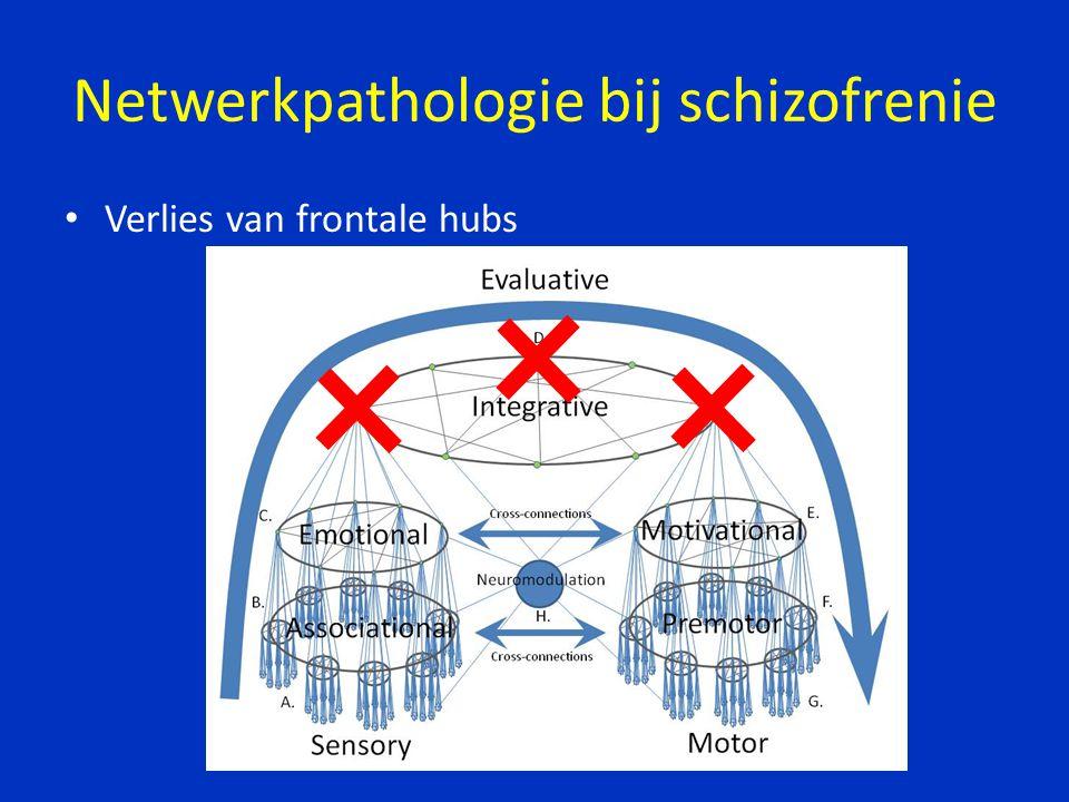Netwerkpathologie bij schizofrenie Verlies van frontale hubs