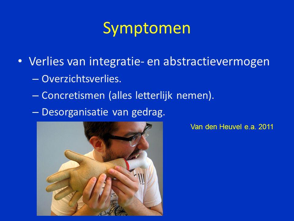 Symptomen Verlies van integratie- en abstractievermogen – Overzichtsverlies.