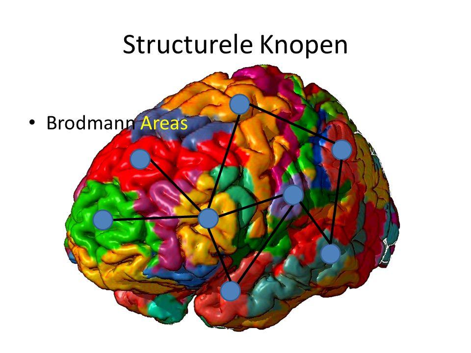 Structurele Knopen Brodmann Areas