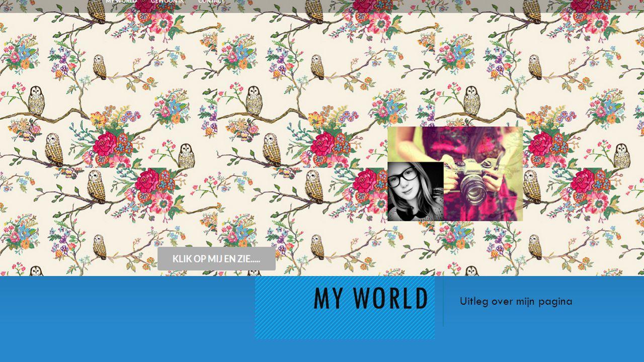 MY WORLD Uitleg over mijn pagina