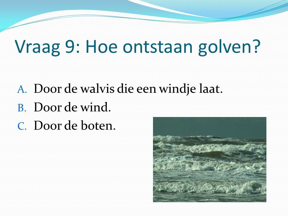 Vraag 9: Hoe ontstaan golven? A. Door de walvis die een windje laat. B. Door de wind. C. Door de boten.