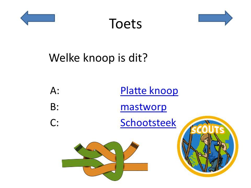 Toets Welke knoop is dit? A:Platte knoopPlatte knoop B:mastworpmastworp C:SchootsteekSchootsteek