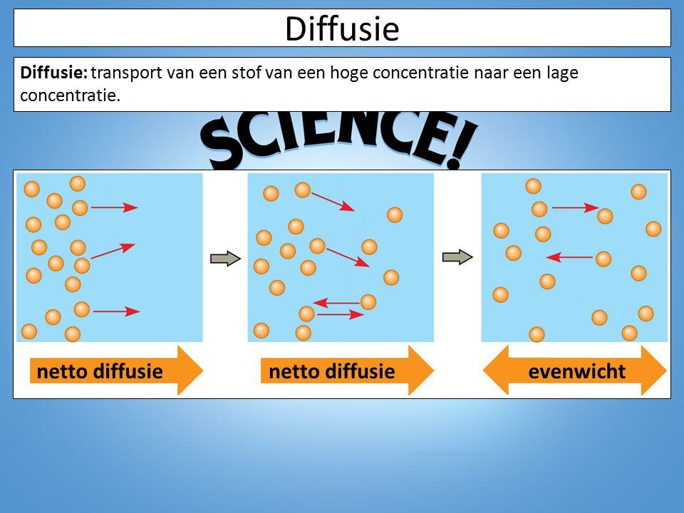 Diffusie Diffusie: transport van een stof van een hoge concentratie naar een lage concentratie. netto diffusie evenwicht