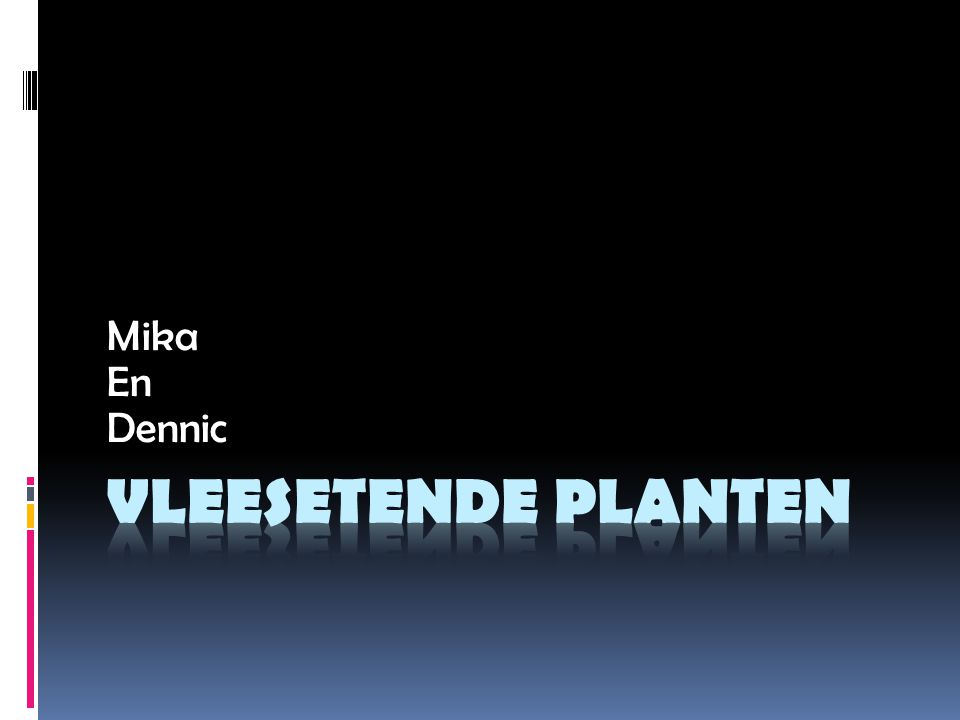 Mika En Dennic