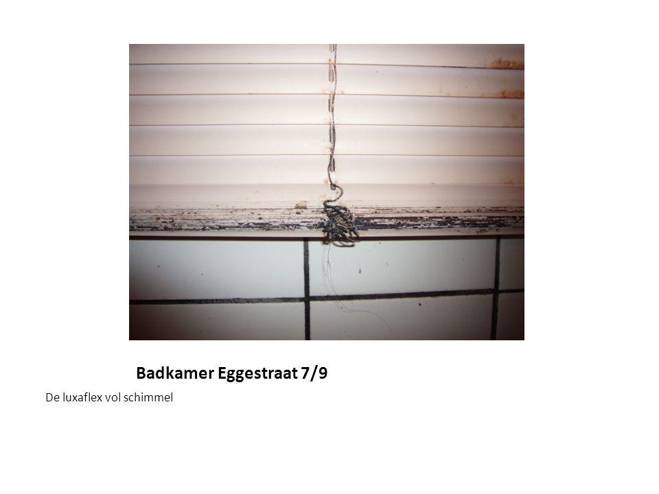 Badkamer Eggestraat 7/9 De luxaflex vol schimmel