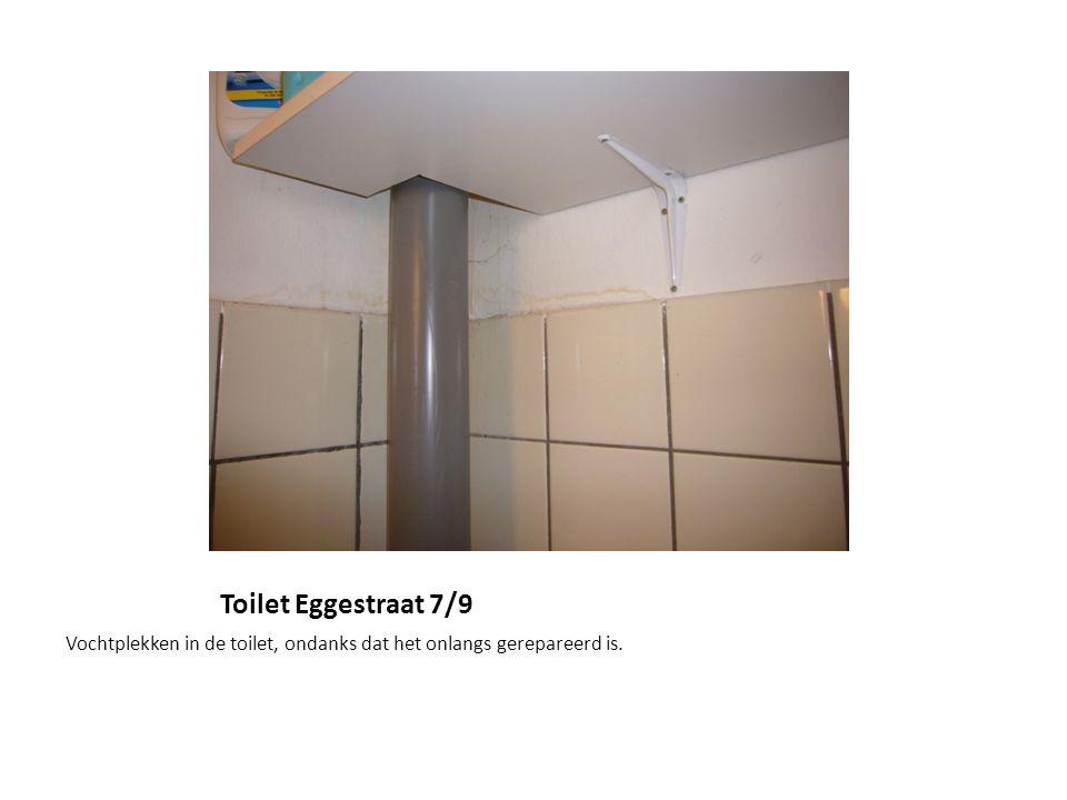 Toilet Eggestraat 7/9 Vochtplekken in de toilet, ondanks dat het onlangs gerepareerd is.