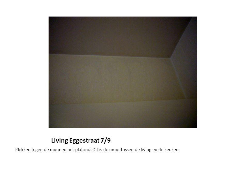Living Eggestraat 7/9 Plekken tegen de muur en het plafond. Dit is de muur tussen de living en de keuken.