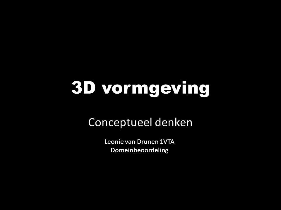 3D vormgeving Conceptueel denken Leonie van Drunen 1VTA Domeinbeoordeling