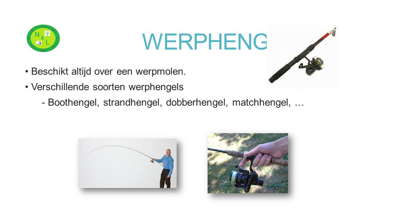 WERPHENGEL Beschikt altijd over een werpmolen. Verschillende soorten werphengels - Boothengel, strandhengel, dobberhengel, matchhengel, …