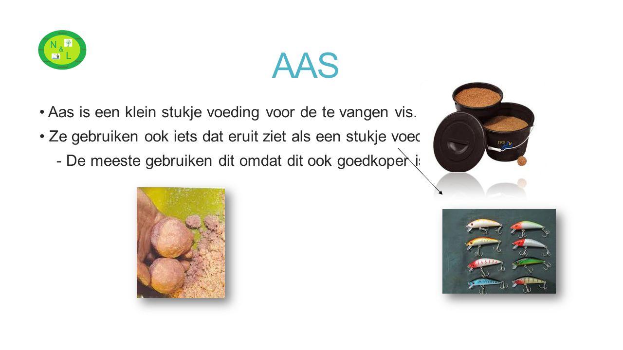 AAS Aas is een klein stukje voeding voor de te vangen vis. Ze gebruiken ook iets dat eruit ziet als een stukje voeding, - De meeste gebruiken dit omda