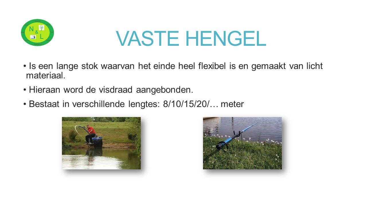 VASTE HENGEL Is een lange stok waarvan het einde heel flexibel is en gemaakt van licht materiaal. Hieraan word de visdraad aangebonden. Bestaat in ver