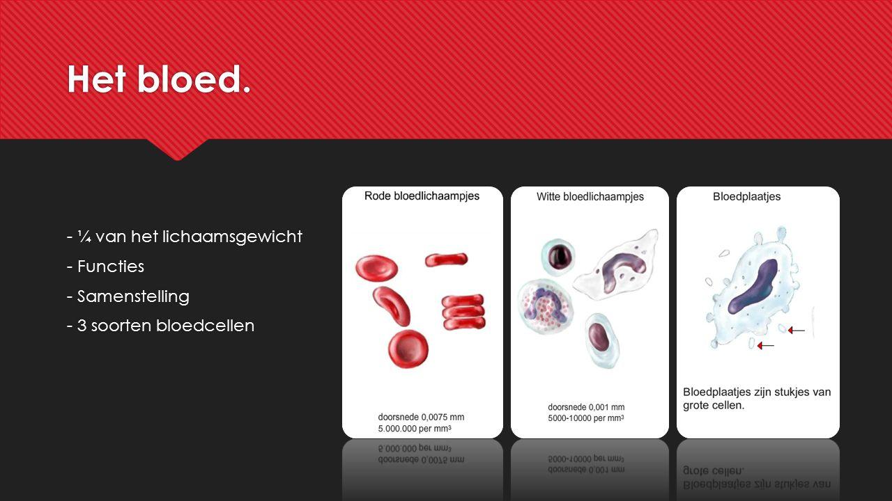 Het lymfevatenstelsel. -Weefselvocht -Wisselt stoffen uit -Kleurloos/wit -Kleppen -Lymfeknopen