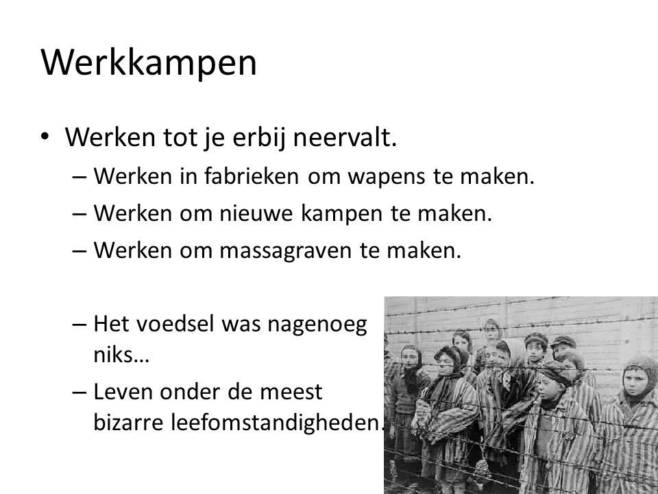 Vernietigingskampen Vrouwen en kinderen: – Direct naar de gaskamer Mannen: – Was je sterk en fit.
