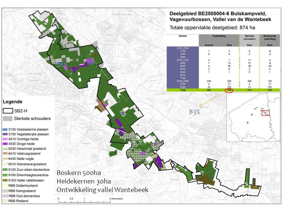 83% Boskern 500ha Heidekernen 30ha Ontwikkeling vallei Wantebeek