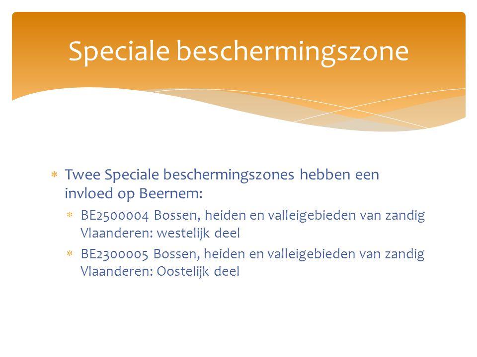  Twee Speciale beschermingszones hebben een invloed op Beernem:  BE2500004 Bossen, heiden en valleigebieden van zandig Vlaanderen: westelijk deel  BE2300005 Bossen, heiden en valleigebieden van zandig Vlaanderen: Oostelijk deel Speciale beschermingszone