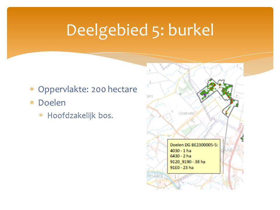 Deelgebied 5: burkel  Oppervlakte: 200 hectare  Doelen  Hoofdzakelijk bos.