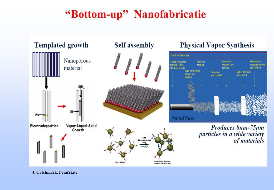 """Bottom-up"" Nanofabricatie J. Catchmark, PennState"