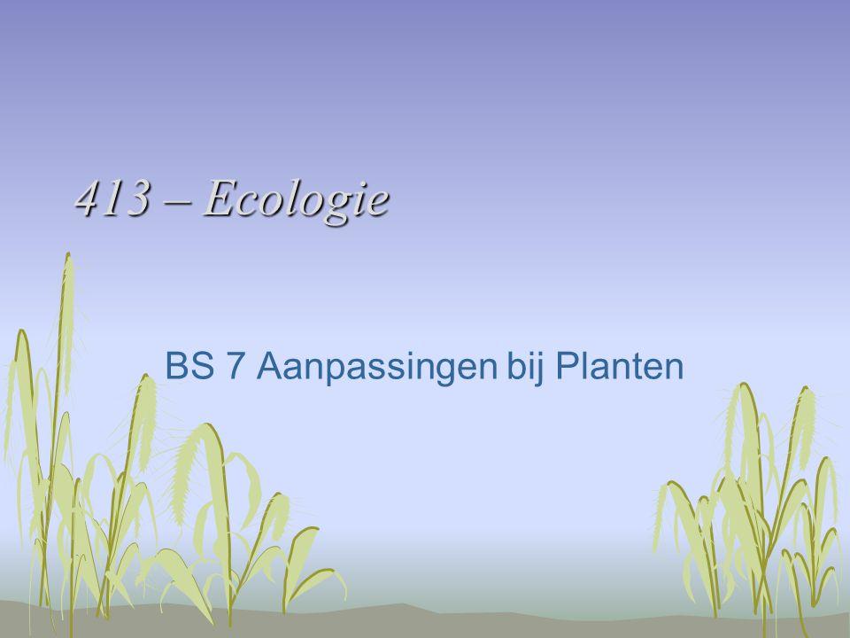 413 – Ecologie BS 7 Aanpassingen bij Planten