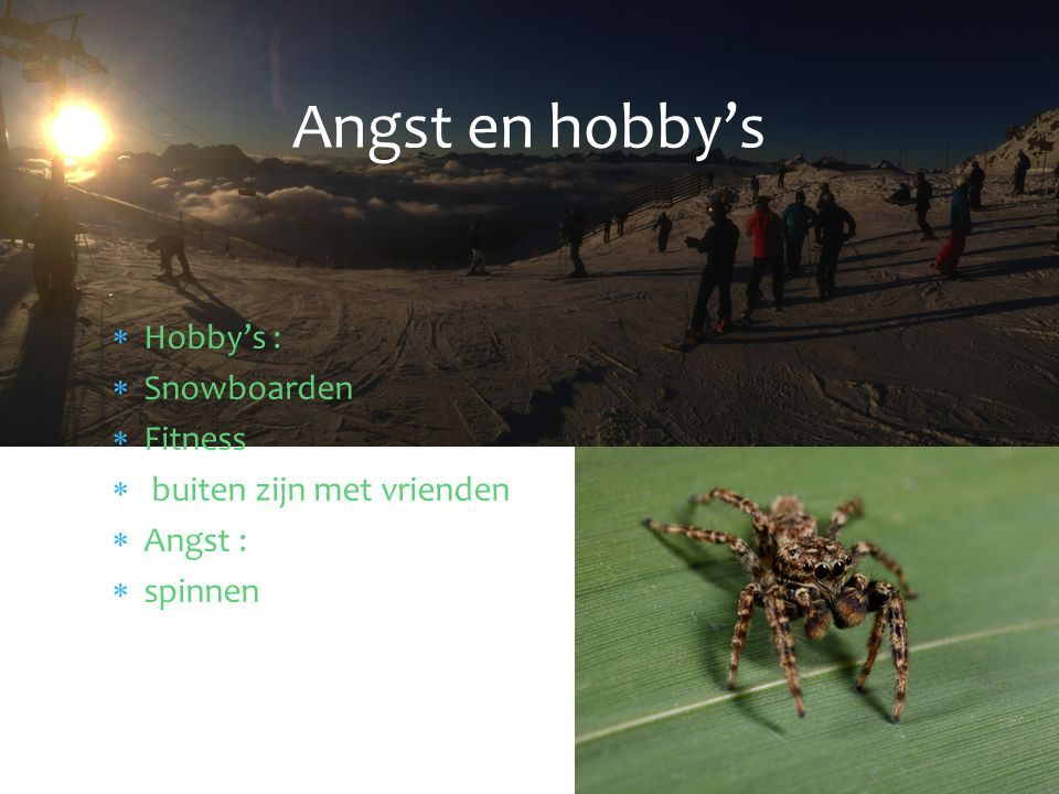  Hobby's :  Snowboarden  Fitness  buiten zijn met vrienden  Angst :  spinnen Angst en hobby's