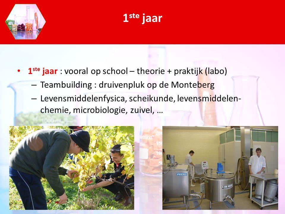 1 ste jaar : vooral op school – theorie + praktijk (labo) – Teambuilding : druivenpluk op de Monteberg – Levensmiddelenfysica, scheikunde, levensmidde