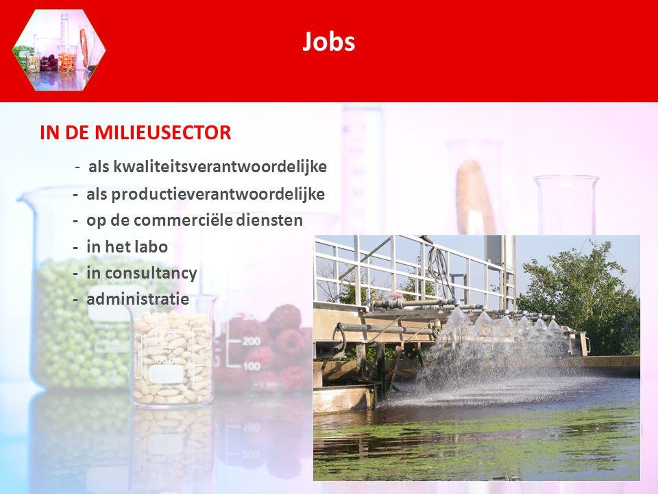 IN DE MILIEUSECTOR - als kwaliteitsverantwoordelijke - als productieverantwoordelijke - op de commerciële diensten - in het labo - in consultancy - ad