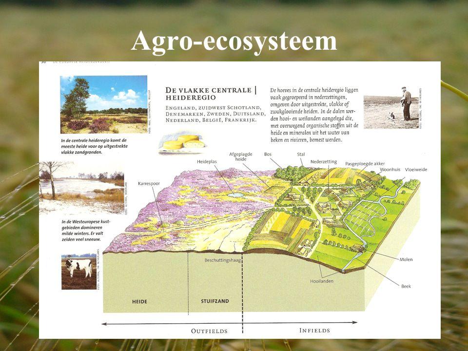 Agro-ecosysteem
