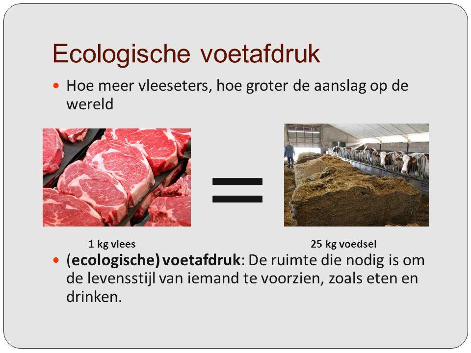 Ecologische voetafdruk Hoe meer vleeseters, hoe groter de aanslag op de wereld (ecologische) voetafdruk: De ruimte die nodig is om de levensstijl van