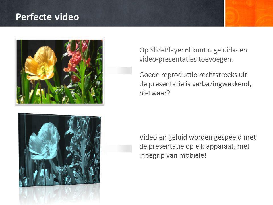 Op SlidePlayer.nl kunt u geluids- en video-presentaties toevoegen.