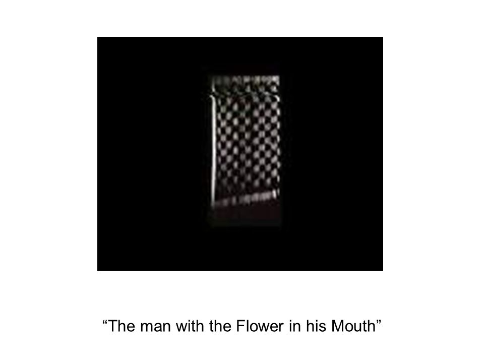 """The man with the Flower in his Mouth"""