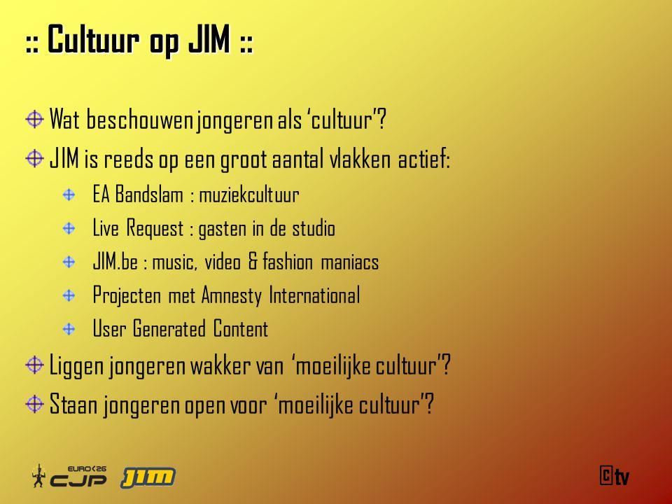©tv :: Cultuur op JIM :: Wat beschouwen jongeren als 'cultuur'.