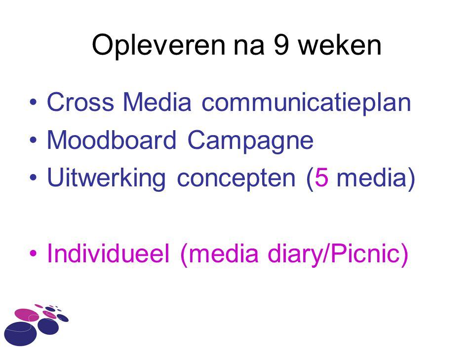 Opleveren na 9 weken •Cross Media communicatieplan •Moodboard Campagne •Uitwerking concepten (5 media) •Individueel (media diary/Picnic)