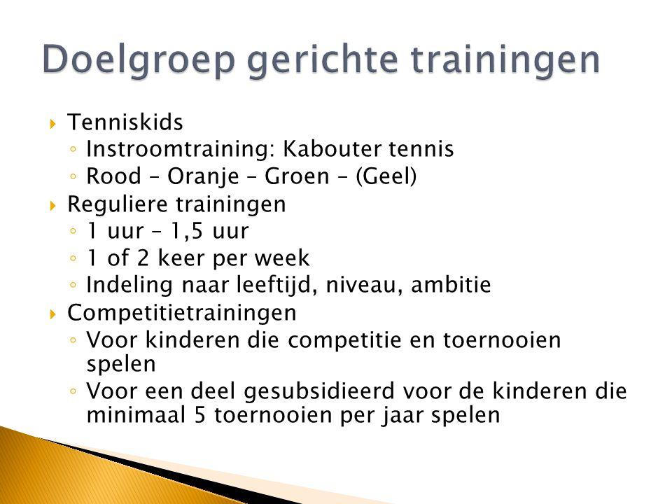  Tennispromotie  Laagdrempelig ◦ Subsidie ◦ Mini's (rood): Gymzaal ◦ 2 Keer per week trainen waarvan 1 keer in een grote groep (+/- 20 kinderen) en