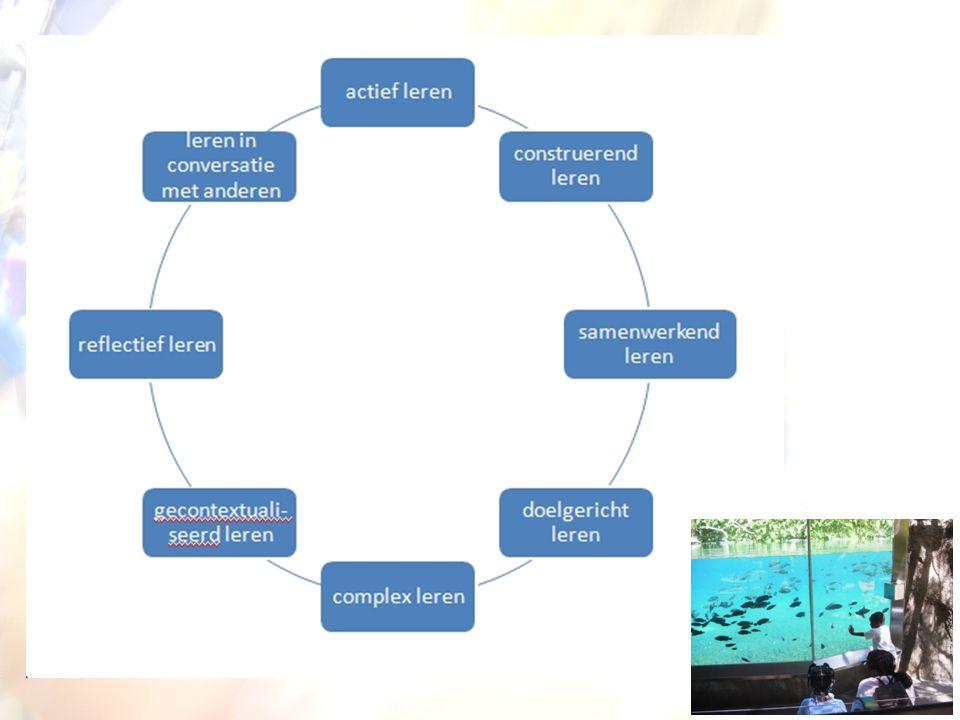 Onderwijskundig referentiekader •Leeractiviteiten –Piaget en Bruner schetsen concrete stappen in leerproces.