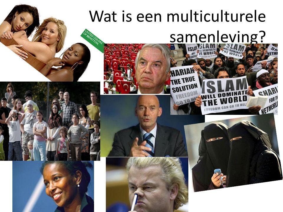 Wat is een multiculturele samenleving?