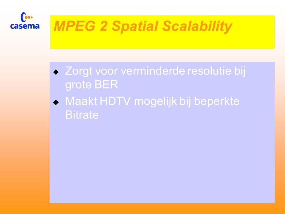  De MS bits zijn voorzien van foutcorrectie  De LS bits niet  Bij bitfouten blijven de MS bits intact  Onder de LS bit ontstaan fouten  Dit uit zich als ruis MPEG 2 SNR Scalabilitaty