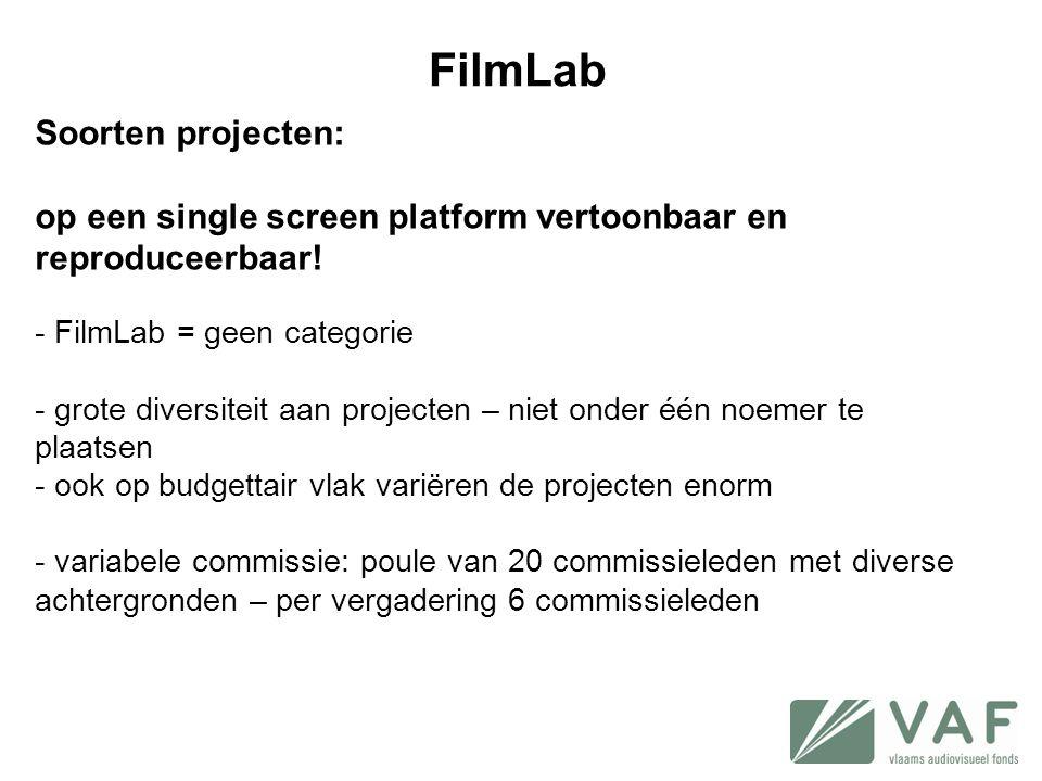 Soorten projecten: op een single screen platform vertoonbaar en reproduceerbaar! - FilmLab = geen categorie - grote diversiteit aan projecten – niet o