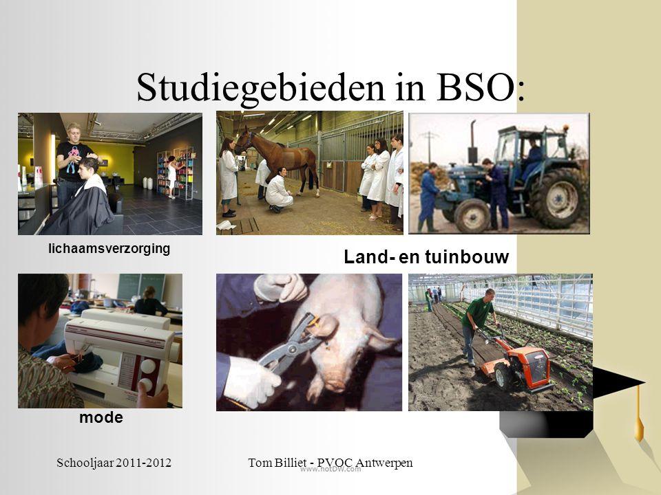 Schooljaar 2011-2012Tom Billiet - PVOC Antwerpen Studiegebieden in BSO: Handel (verkoop/kantoor) juwelen Grafische communicatie en media Decoratieve technieken