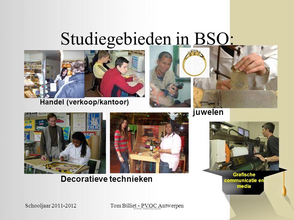 Schooljaar 2011-2012Tom Billiet - PVOC Antwerpen Studiegebieden in BSO: Handel (verkoop/kantoor) juwelen Grafische communicatie en media Decoratieve t