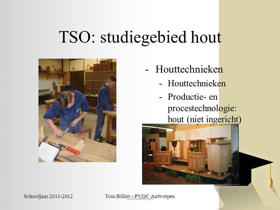 Schooljaar 2011-2012Tom Billiet - PVOC Antwerpen TSO: studiegebied hout -Houttechnieken -Productie- en procestechnologie: hout (niet ingericht)