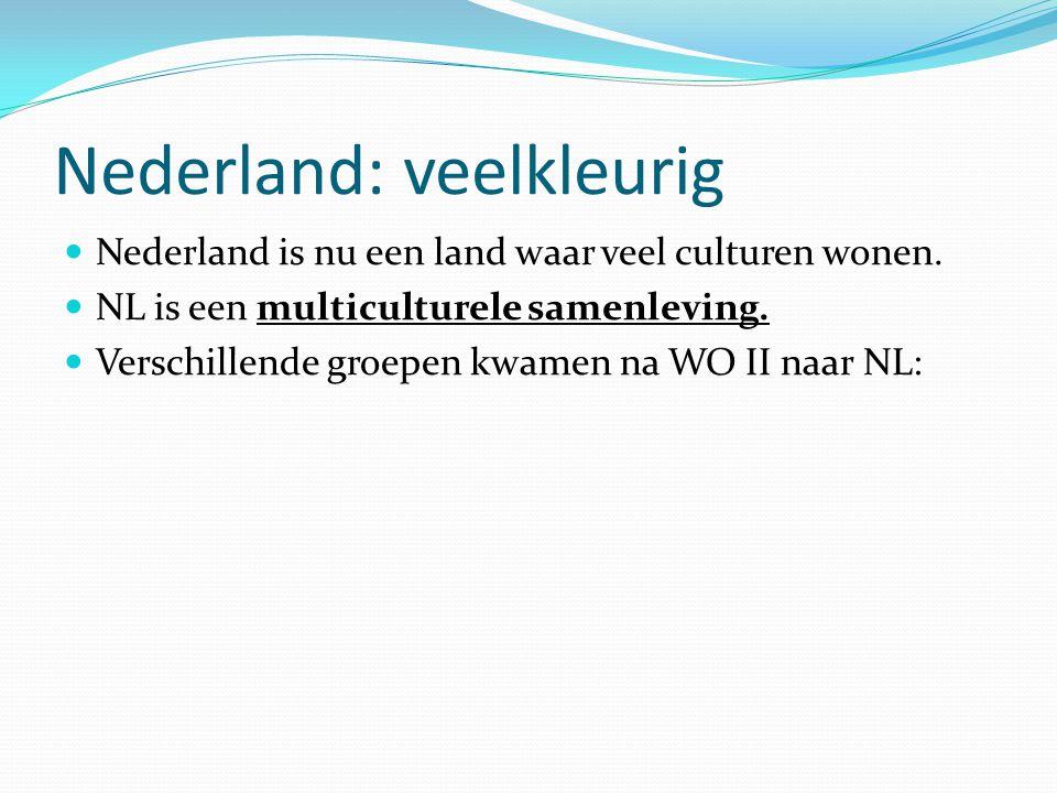 Nederland: veelkleurig  Nederland is nu een land waar veel culturen wonen.  NL is een multiculturele samenleving.  Verschillende groepen kwamen na