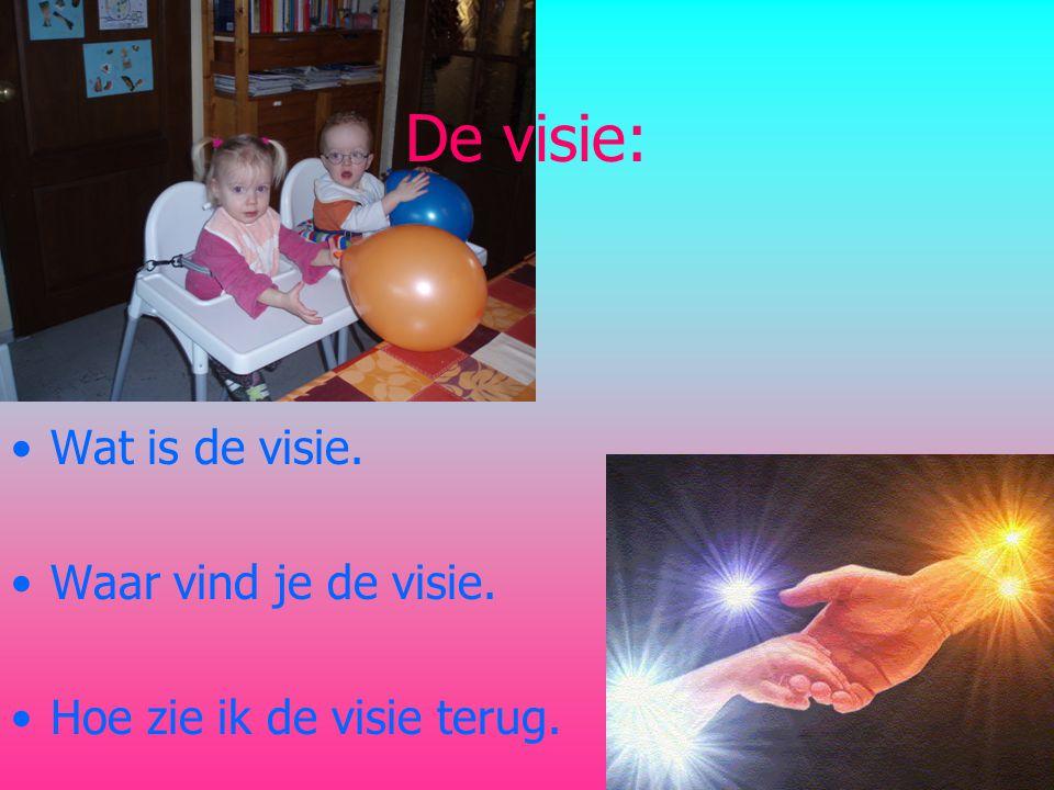 De visie: •Wat is de visie. •Waar vind je de visie. •Hoe zie ik de visie terug.